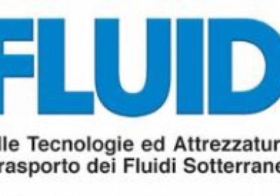 Protected: GEOFLUID 2018 Piacenza Italia